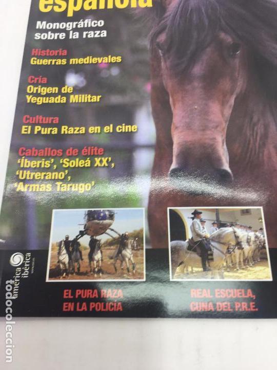 Coleccionismo deportivo: REVISTA P.R.E. pura raza española - TROFEO CABALLO - Nº 2 - NOVIEMBRE 2008 - Foto 4 - 108405295