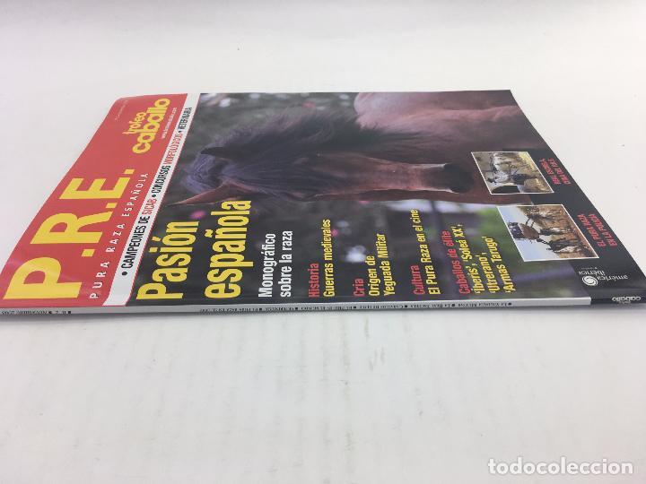 Coleccionismo deportivo: REVISTA P.R.E. pura raza española - TROFEO CABALLO - Nº 2 - NOVIEMBRE 2008 - Foto 7 - 108405295