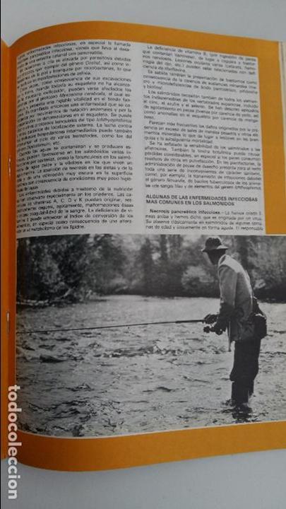 Coleccionismo deportivo: REVISTA CAZA Y PESCA. ABRIL 1977. 412. PUBLICIDAD - Foto 3 - 112208899