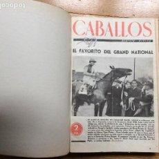 Coleccionismo deportivo: CABALLOS REVISTA HÍPICA AÑO II 1946 COMPLETO DEL N° 22 AL 45 INCLUIDOS ENERO A DICIEMBRE. Lote 116241463