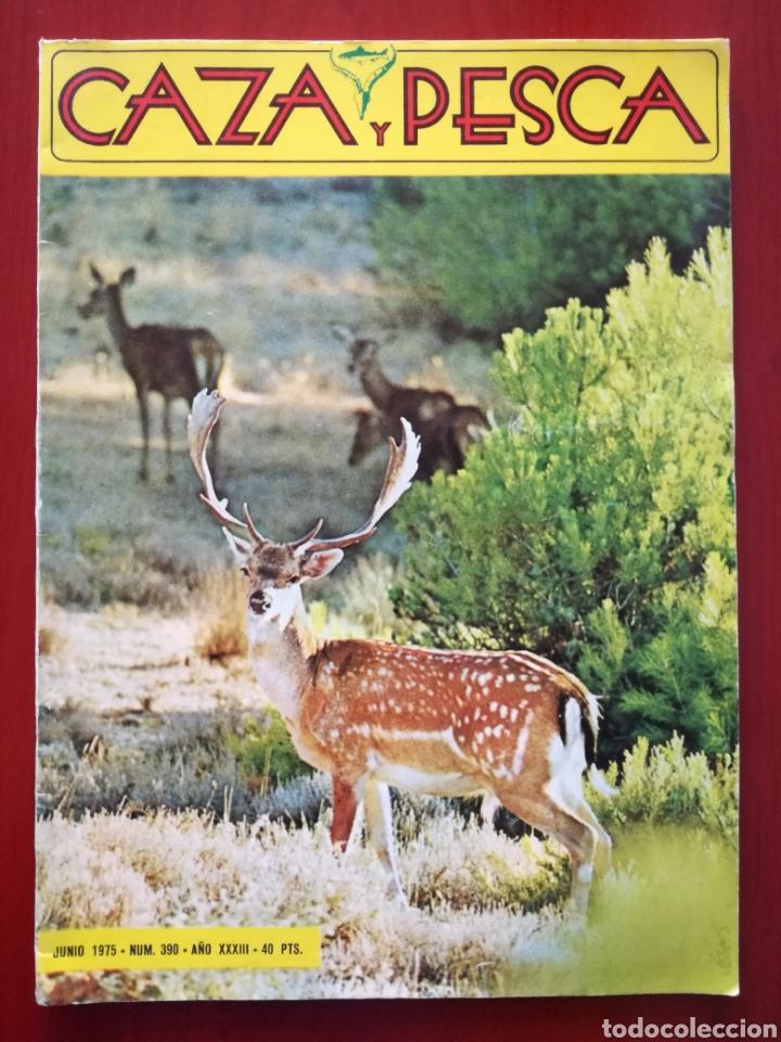 CAZA Y PESCA N°390 (Coleccionismo Deportivo - Revistas y Periódicos - otros Deportes)