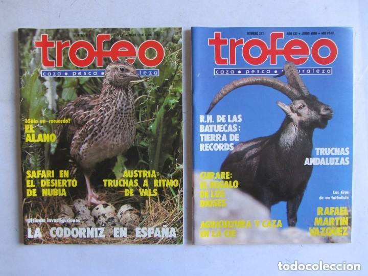 Coleccionismo deportivo: TROFEO. REVISTA CAZA, (PESCA, NATURALEZA) LOTE DE 69 EJEMPLARES ENTRE Nº 236 (1990) Y 331 (1997) VER - Foto 17 - 135812018
