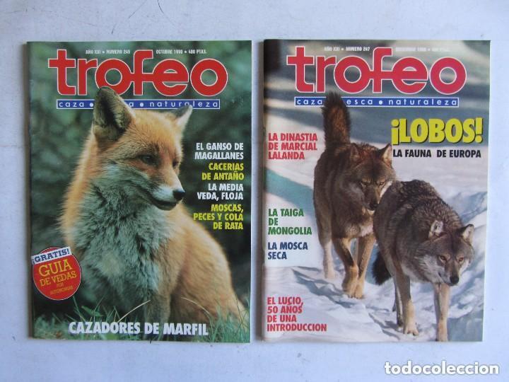 Coleccionismo deportivo: TROFEO. REVISTA CAZA, (PESCA, NATURALEZA) LOTE DE 69 EJEMPLARES ENTRE Nº 236 (1990) Y 331 (1997) VER - Foto 18 - 135812018