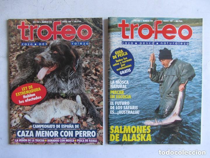 Coleccionismo deportivo: TROFEO. REVISTA CAZA, (PESCA, NATURALEZA) LOTE DE 69 EJEMPLARES ENTRE Nº 236 (1990) Y 331 (1997) VER - Foto 19 - 135812018