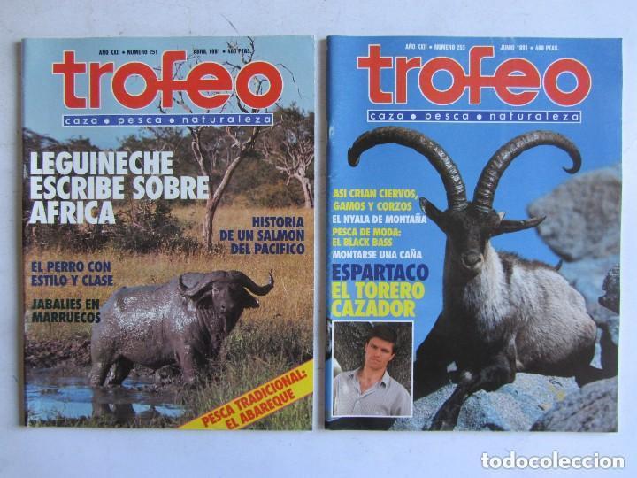 Coleccionismo deportivo: TROFEO. REVISTA CAZA, (PESCA, NATURALEZA) LOTE DE 69 EJEMPLARES ENTRE Nº 236 (1990) Y 331 (1997) VER - Foto 20 - 135812018