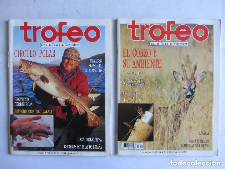 Coleccionismo deportivo: TROFEO. REVISTA CAZA, (PESCA, NATURALEZA) LOTE DE 69 EJEMPLARES ENTRE Nº 236 (1990) Y 331 (1997) VER - Foto 23 - 135812018