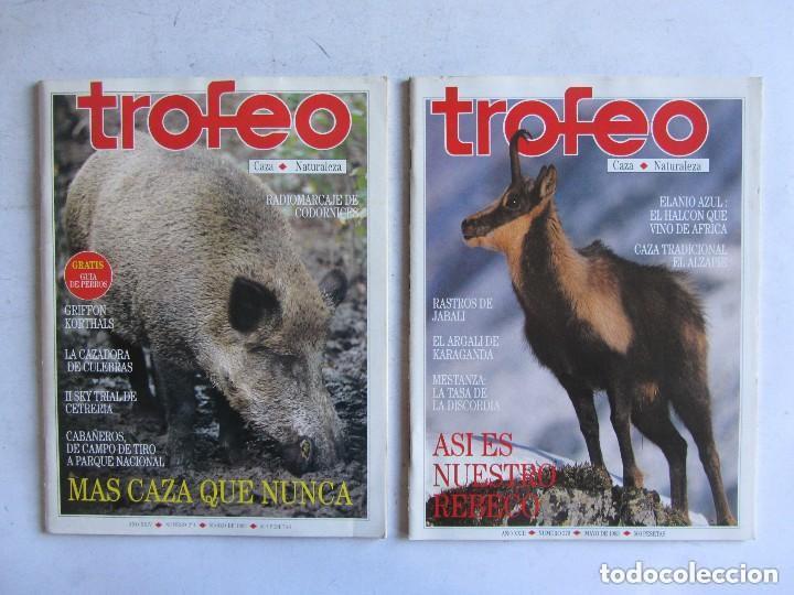 Coleccionismo deportivo: TROFEO. REVISTA CAZA, (PESCA, NATURALEZA) LOTE DE 69 EJEMPLARES ENTRE Nº 236 (1990) Y 331 (1997) VER - Foto 26 - 135812018