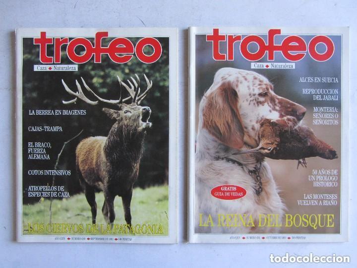 Coleccionismo deportivo: TROFEO. REVISTA CAZA, (PESCA, NATURALEZA) LOTE DE 69 EJEMPLARES ENTRE Nº 236 (1990) Y 331 (1997) VER - Foto 28 - 135812018