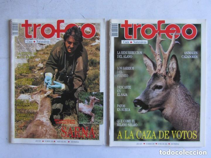 Coleccionismo deportivo: TROFEO. REVISTA CAZA, (PESCA, NATURALEZA) LOTE DE 69 EJEMPLARES ENTRE Nº 236 (1990) Y 331 (1997) VER - Foto 32 - 135812018