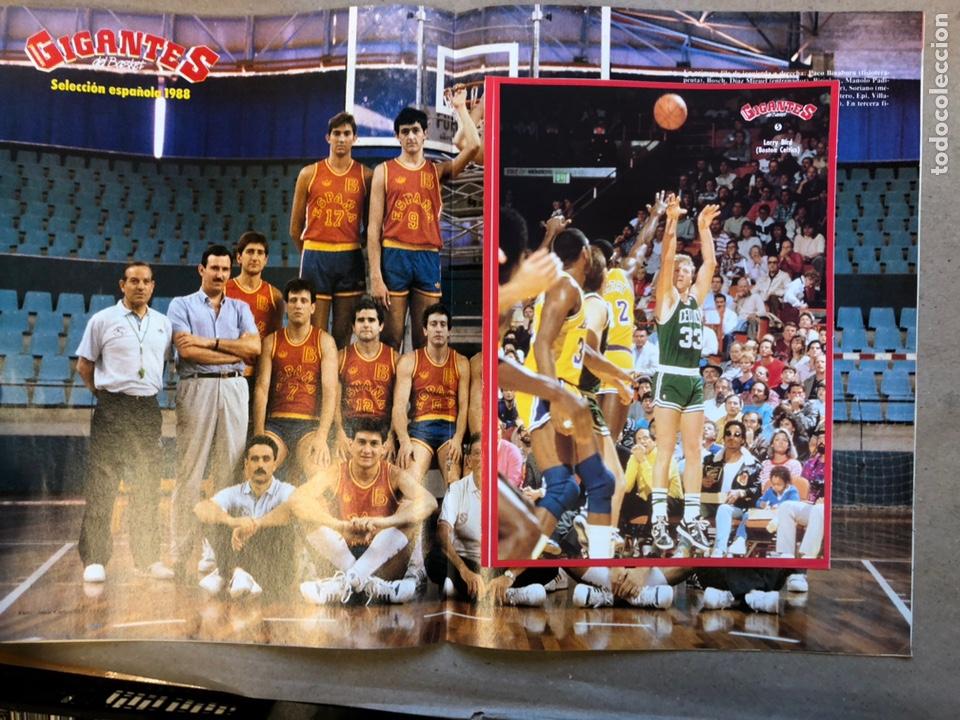 Coleccionismo deportivo: GIGANTES DEL BASKET N°136 (1988). SELECCIÓN ESPAÑOLA SEÚL '88 (POSTER), NBA, PEGATINA LARRY BIRD,.: - Foto 2 - 148413138