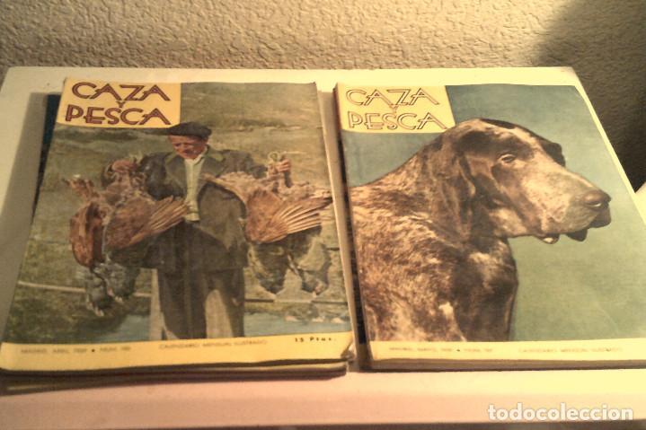 SEIS REVISTAS ''CAZA Y PESCA'' AÑO 1959 (Coleccionismo Deportivo - Revistas y Periódicos - otros Deportes)