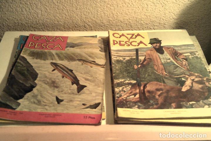 Coleccionismo deportivo: Seis revistas ''Caza y Pesca'' año 1959 - Foto 3 - 152489222