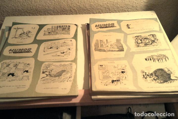 Coleccionismo deportivo: Seis revistas ''Caza y Pesca'' año 1959 - Foto 4 - 152489222