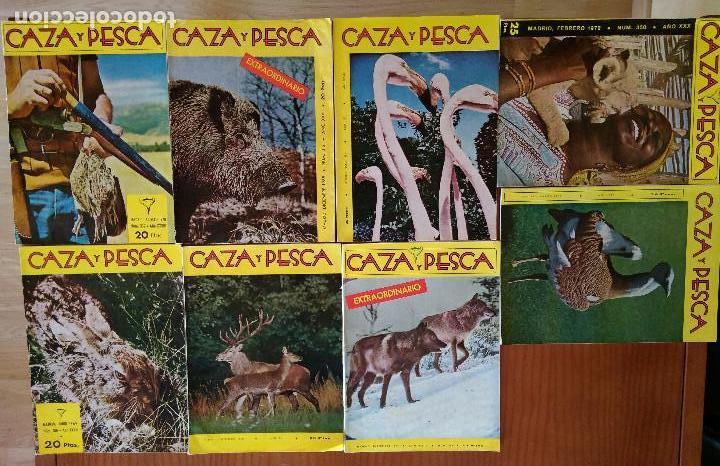 REVISTA CAZA Y PESCA (LOTE) (Coleccionismo Deportivo - Revistas y Periódicos - otros Deportes)