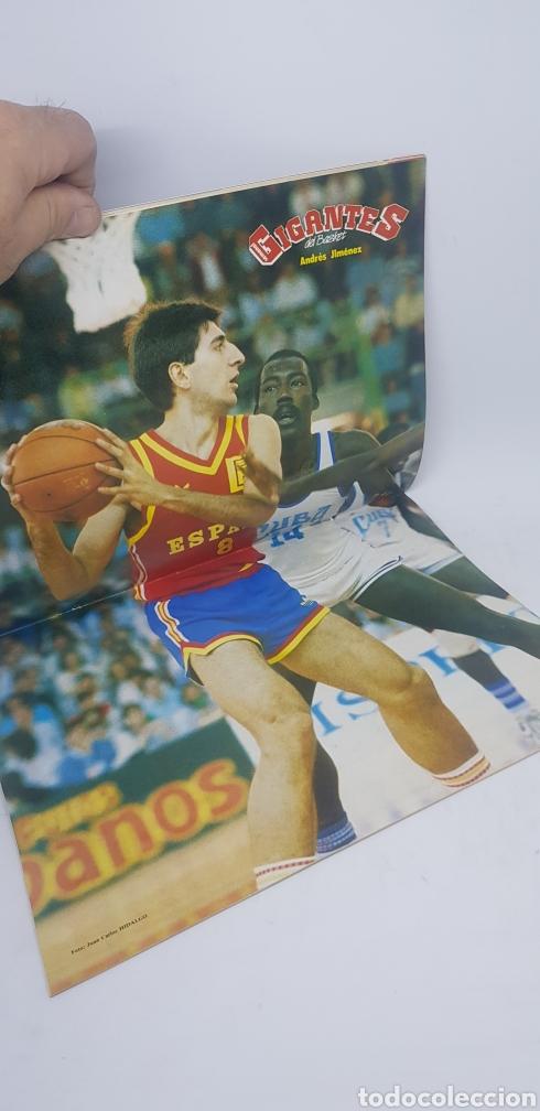 Coleccionismo deportivo: Revista baloncesto Gigantes del Basket número 82 con cromos y póster ,Magic Johnson - Foto 3 - 166320598
