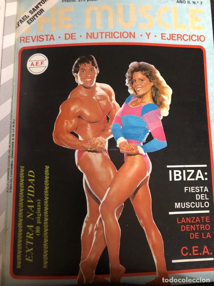 Coleccionismo deportivo: LO MEJOR DE THE MUSCLE. 3 REVISTAS N° 7, 8 y 9. FISICOCULTURISMO. 1983 - Foto 2 - 219470265