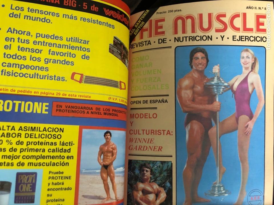 Coleccionismo deportivo: LO MEJOR DE THE MUSCLE. 3 REVISTAS N° 7, 8 y 9. FISICOCULTURISMO. 1983 - Foto 3 - 219470265