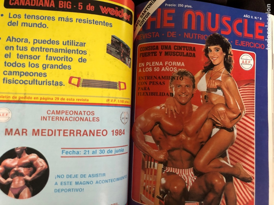 Coleccionismo deportivo: LO MEJOR DE THE MUSCLE. 3 REVISTAS N° 7, 8 y 9. FISICOCULTURISMO. 1983 - Foto 4 - 219470265