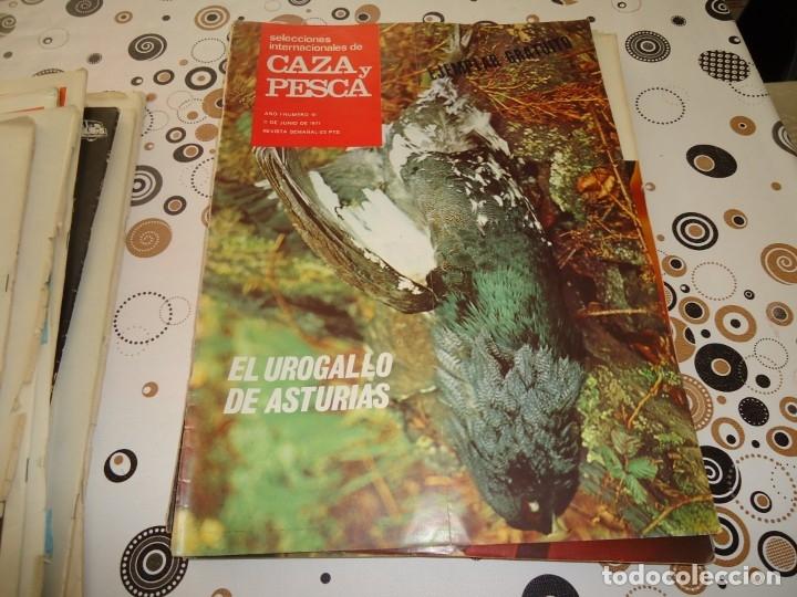 SELECCIONES INTERNACIONALES DE CAZA Y PESCA Nº 10 (Coleccionismo Deportivo - Revistas y Periódicos - otros Deportes)