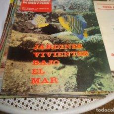 Coleccionismo deportivo: SELECCIONES INTERNACIONALES DE CAZA Y PESCA Nº 96. Lote 173903214