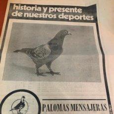 Colecionismo desportivo: PALOMAS MENSAJERAS - CURIOSO REPORTAJE DE 8 PAGINAS EN PAPEL DE PERIODICO, ENRIQUE SOS. Lote 212799326