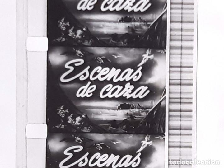 Coches: Película sonora del NODO en 16 mm. Imágenes Nº 412, Escenas de Caza. Con funda de Piel. - Foto 6 - 243856520