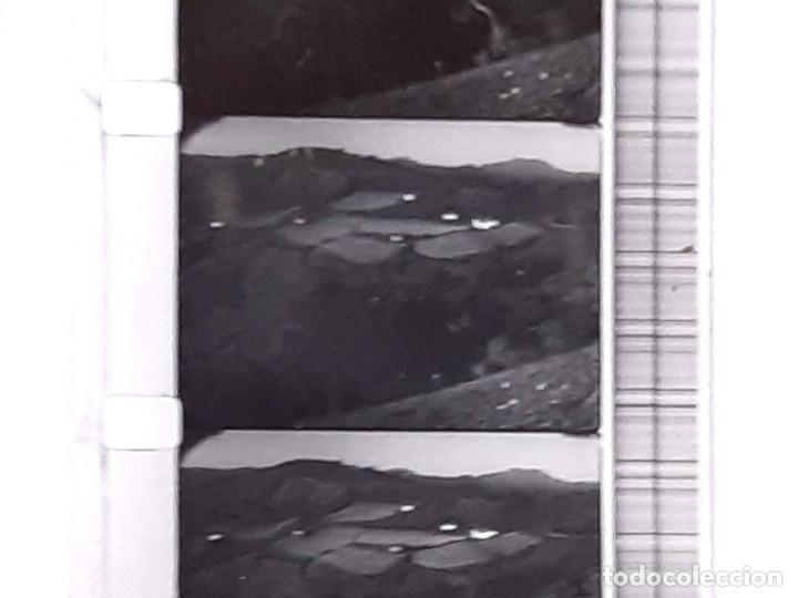 Coches: Película sonora del NODO en 16 mm. Imágenes Nº 412, Escenas de Caza. Con funda de Piel. - Foto 7 - 243856520