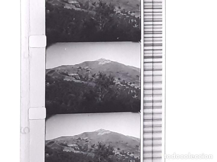 Coches: Película sonora del NODO en 16 mm. Imágenes Nº 412, Escenas de Caza. Con funda de Piel. - Foto 8 - 243856520