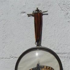 Segunda Mano: MARIPOZA EN MARCADA EN CRISTAL. Lote 28625187