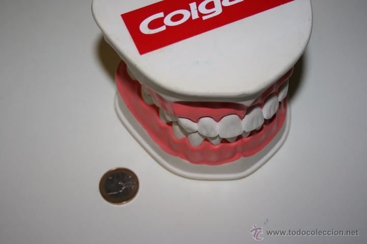 Segunda Mano: Colgate. Curiosa dentadura en pasta dura que la firma comercial regalaba a dentistas y farmacias. - Foto 6 - 51257116