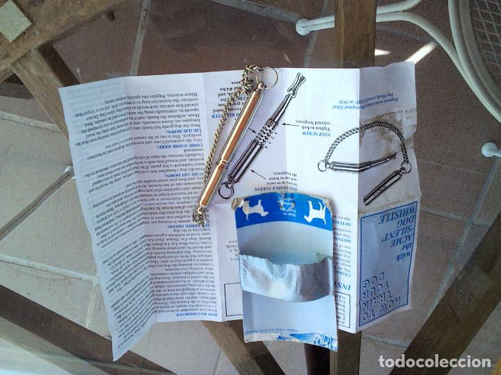PITO EDUCA PERROS (Segunda Mano - Hogar y decoración)