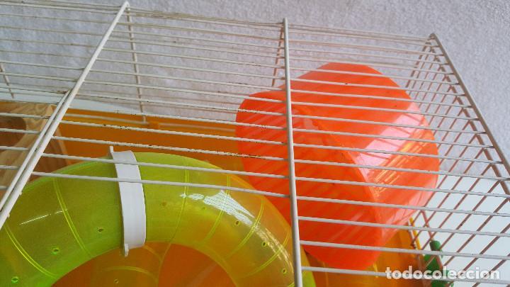 Segunda Mano: Jaula de hamster con comedero, bebedero, casita, escalera, plataforma y rueda PARESE COMPLETO - Foto 4 - 171634708