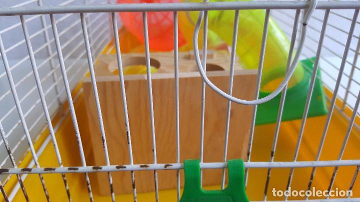Segunda Mano: Jaula de hamster con comedero, bebedero, casita, escalera, plataforma y rueda PARESE COMPLETO - Foto 7 - 171634708