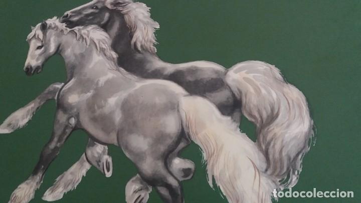 Segunda Mano: Laminas de caballos - Foto 4 - 177591279