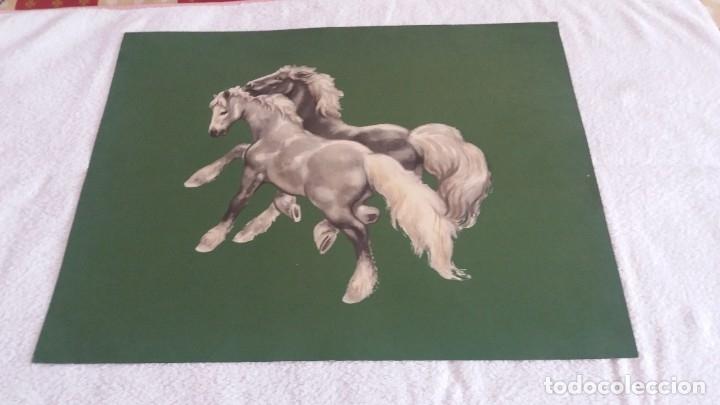 Segunda Mano: Laminas de caballos - Foto 6 - 177591279