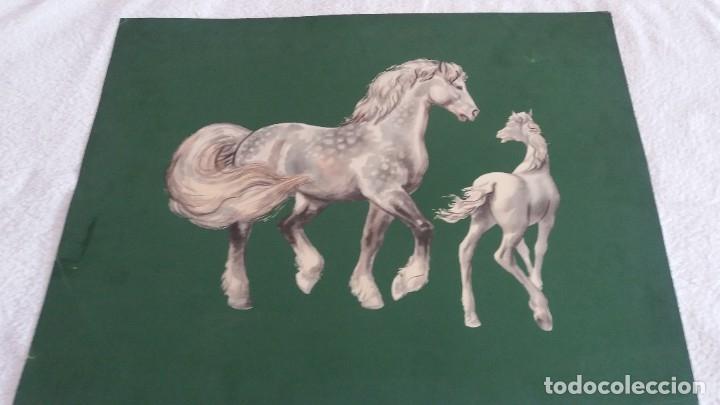 Segunda Mano: Laminas de caballos - Foto 8 - 177591279