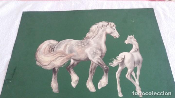 Segunda Mano: Laminas de caballos - Foto 11 - 177591279