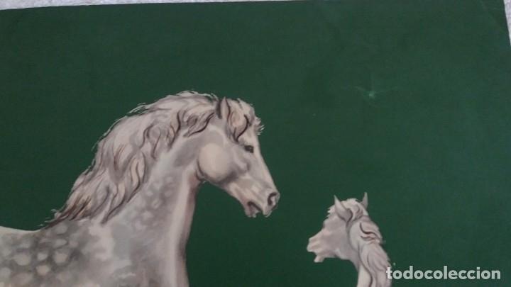 Segunda Mano: Laminas de caballos - Foto 15 - 177591279