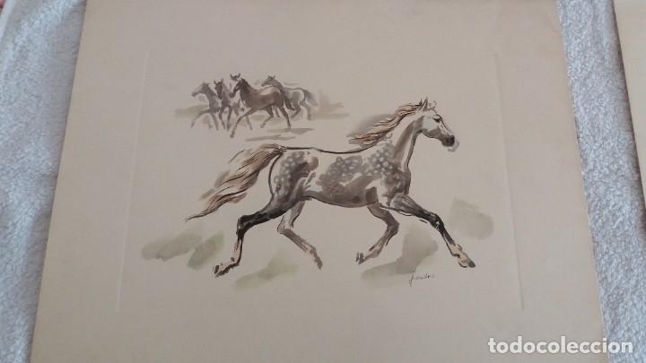 Segunda Mano: Laminas de caballos - Foto 2 - 177592222
