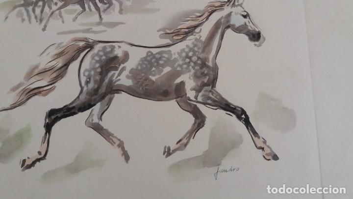 Segunda Mano: Laminas de caballos - Foto 3 - 177592222