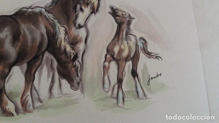 Segunda Mano: Laminas de caballos - Foto 6 - 177592222