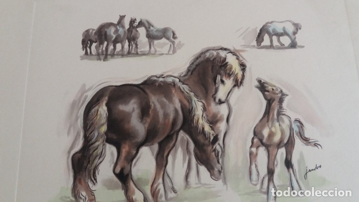 Segunda Mano: Laminas de caballos - Foto 7 - 177592222