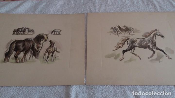 Segunda Mano: Laminas de caballos - Foto 13 - 177592222