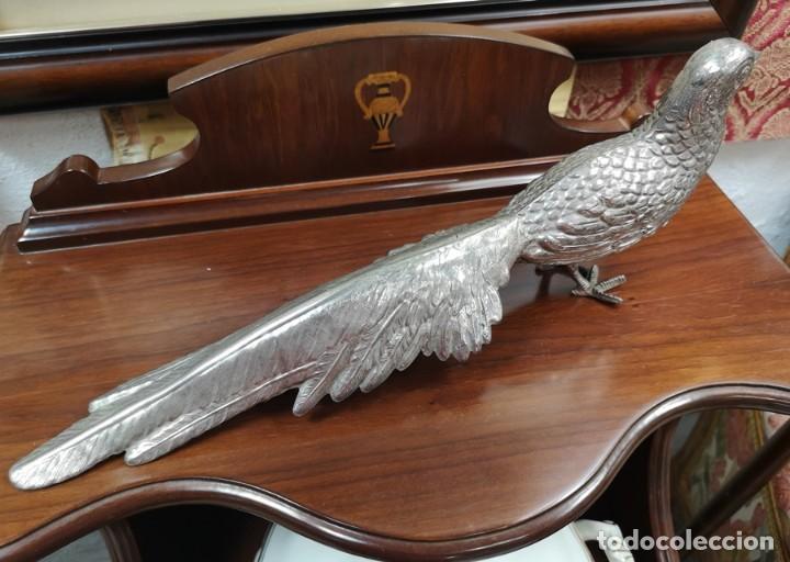 Segunda Mano: Pareja de pavo real - Foto 3 - 210178921
