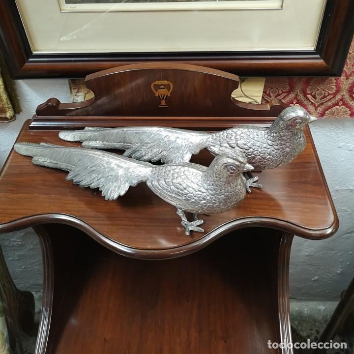 Segunda Mano: Pareja de pavo real - Foto 5 - 210178921
