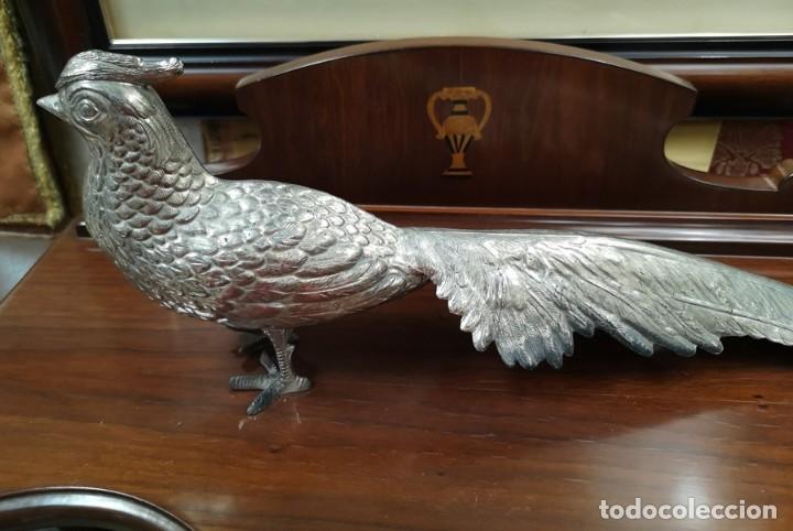 Segunda Mano: Pareja de pavo real - Foto 6 - 210178921