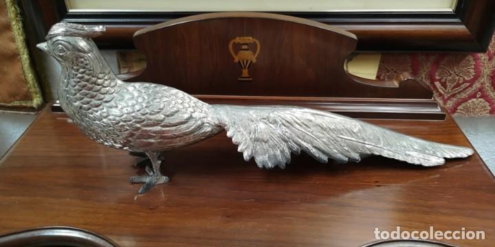 Segunda Mano: Pareja de pavo real - Foto 7 - 210178921