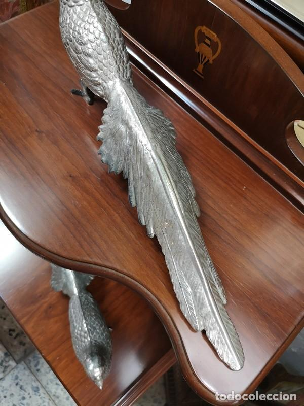 Segunda Mano: Pareja de pavo real - Foto 8 - 210178921