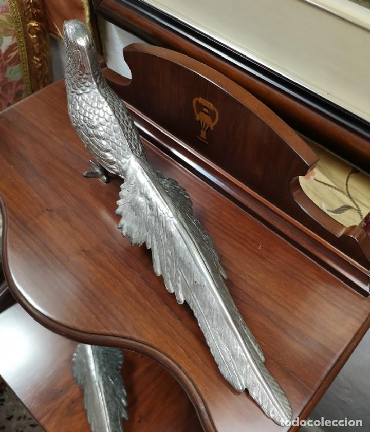 Segunda Mano: Pareja de pavo real - Foto 9 - 210178921