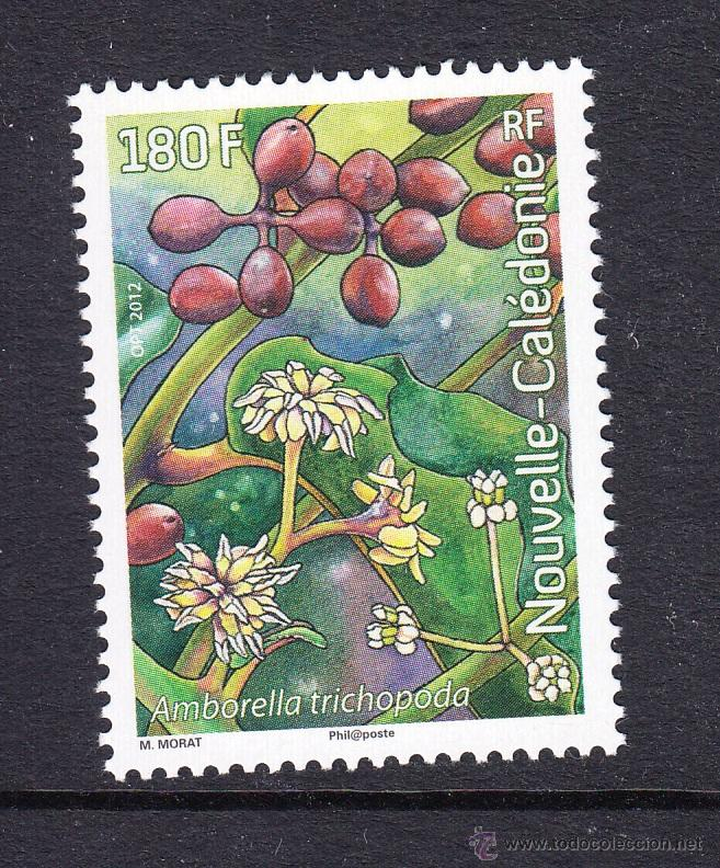 NUEVA CALEDONIA 2012 AMBORELLA TRICHOPODA. PLANTAS Y FLORES (Sellos - Extranjero - Oceanía - Otros paises)